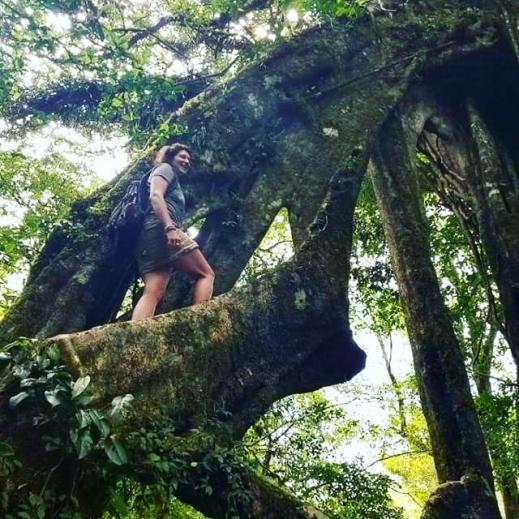 CR_TREE